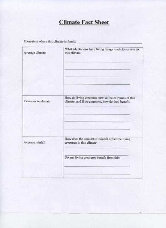 Ecosystem Worksheet Homeschooldressage Com