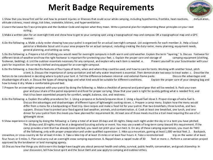 Collections Merit Badge Worksheet
