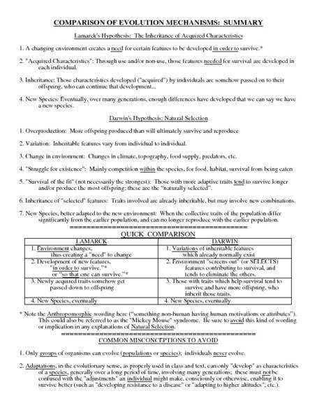 And Natural Selection Worksheets Samsungblueearth