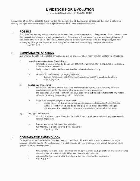 Evidence Evolution Worksheet Answers Awesome Evidence for Evolution 10th Grade Worksheet