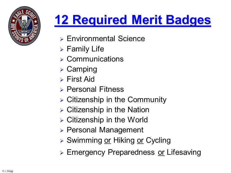 Family Life Merit Badge Worksheet | Homeschooldressage.com