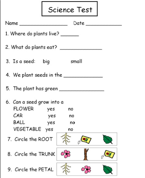 Science Worksheets For Grade 1 Plants Autism tank science unit plants
