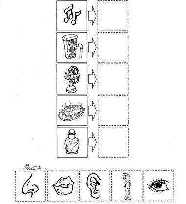 five senses cut paste worksheet