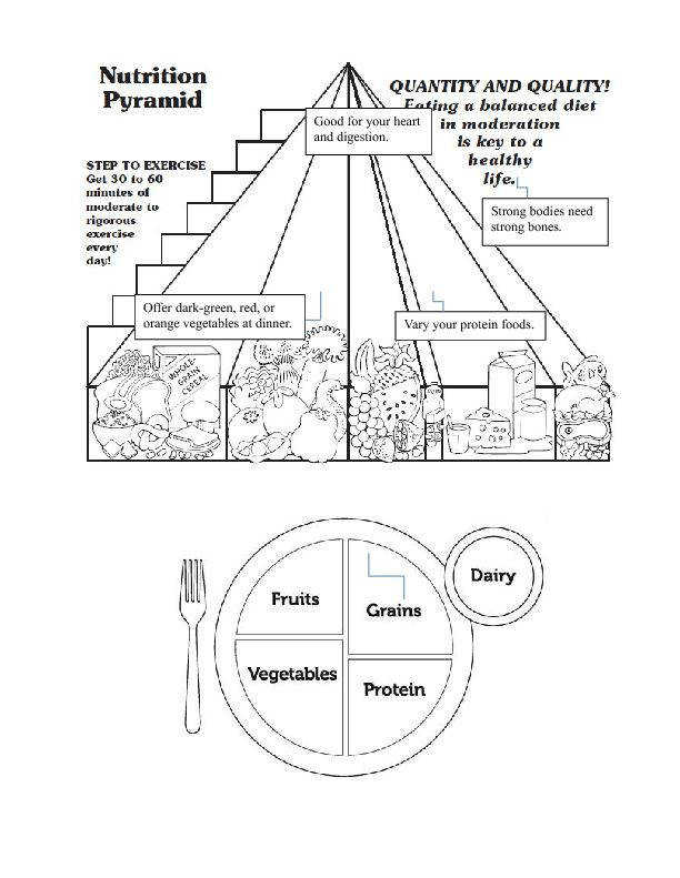 This worksheet has information adapted from It requires students to fill up the parts of the food pyramid and extract information from the