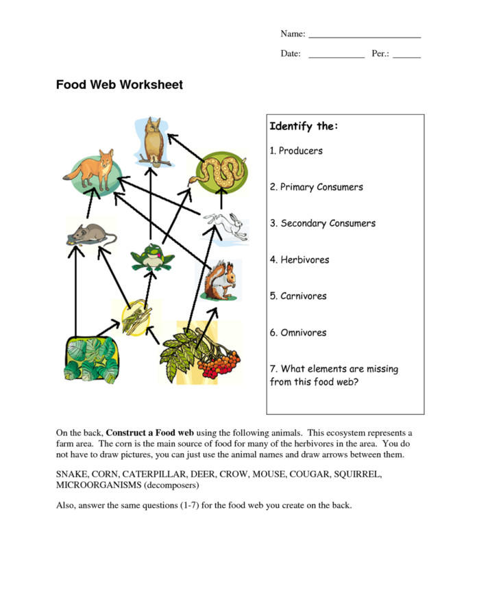 Food Web Worksheet Homeschooldressage. Food Web Diagram Worksheet. Worksheet. Food Web Worksheet At Mspartners.co