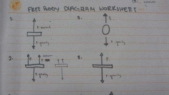 Free body diagram worksheet Free Body Diagram Worksheet Amira College Body Diagram Worksheet with medium image