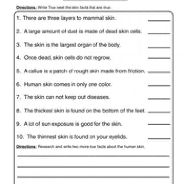 Best Ideas of Grade 5 Science Worksheets Human Body For Your Free