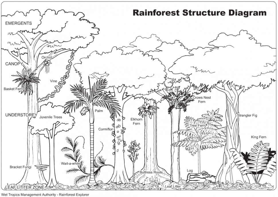 Coloring Pages Biome Coloring Pages Biome Coloring Pages