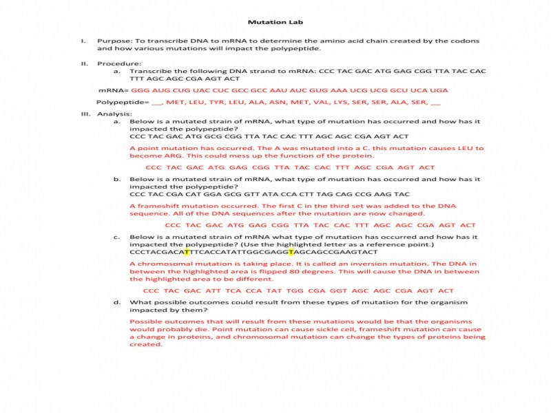 Gene Mutations Worksheet Homeschooldressage Com border=