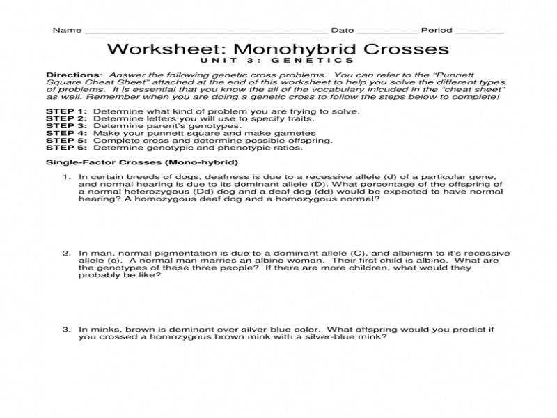 Download by size Handphone Tablet Desktop Original Size Back To Monohybrid Cross Problems Worksheet