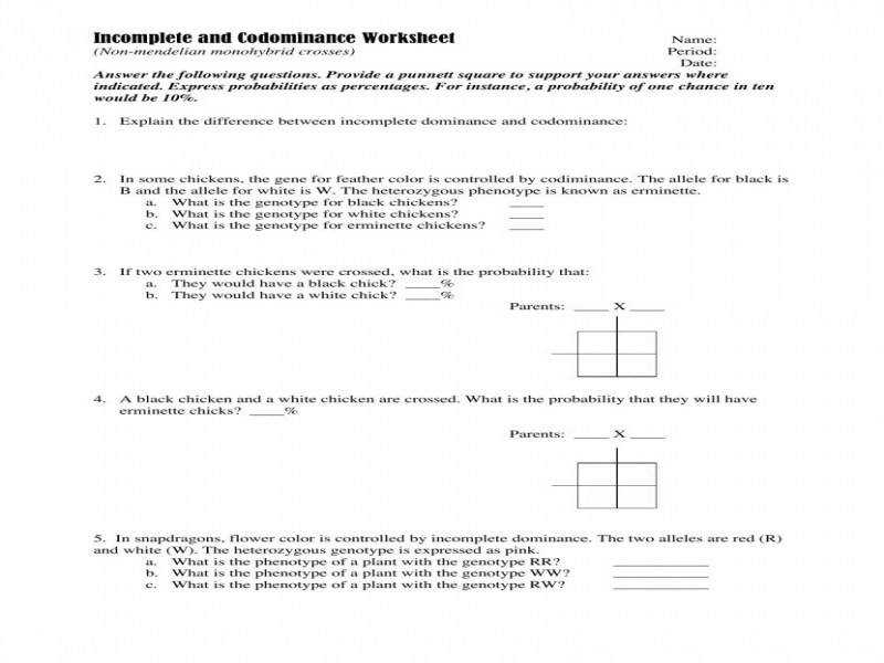 Mendelian Genetics Worksheet Semnext