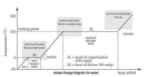 This phase change diagram for water shows the temperature of water as heat is added