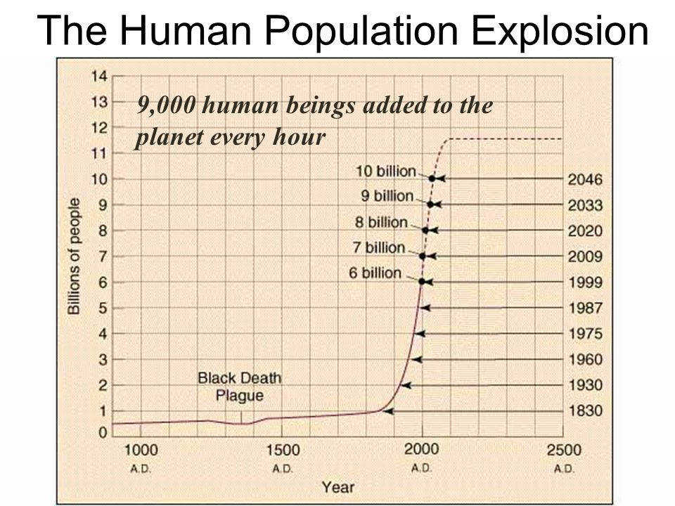 The Human Population Explosion