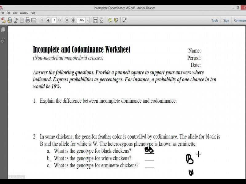 In plete And Codominace Worksheet Part1 – Youtube