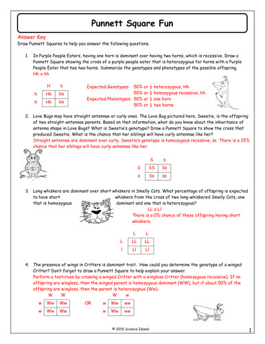 Inheritance Activities Genetics Terminology and Punnett Squares by Scienceisland Teaching Resources Tes