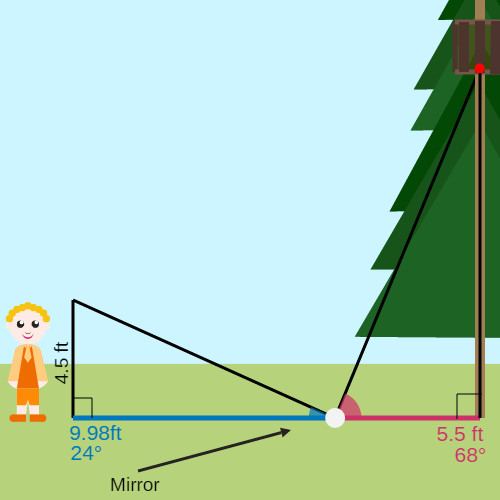 Indirect Measurement Treehouse Height