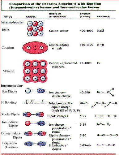 Summary of intramolecular and intermolecular forces