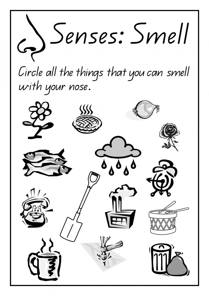 Free science printables for kindergarten