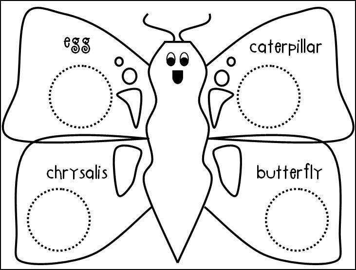 We re learning about the life cycle of butterflies this month and our art activity that we did a fun symmetry activity You just fold a piece of paper in
