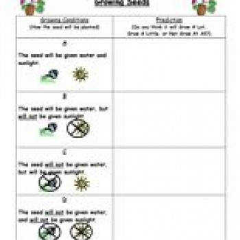 Making Predictions Reading Worksheets Spelling Grammar