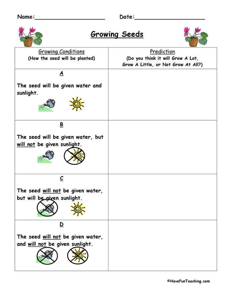 Predict and Infer Plant Worksheet