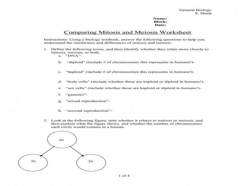 Delectable Mitosis Vs Meiosis Worksheet Lesson Planet munity 1 D D73C1E7B80A8Bb65F547C9Ed1