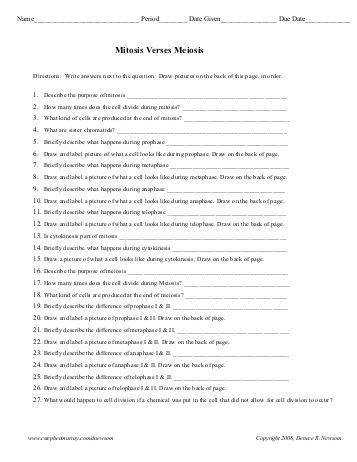 Worksheets Mitosis And Meiosis Worksheet Answers mitosis versus meiosis worksheet quality80
