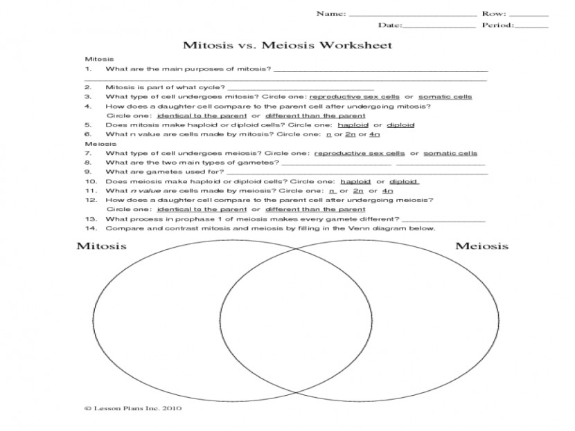 meiosis Source · Vs Mitosis Worksheet Phoenixpayday