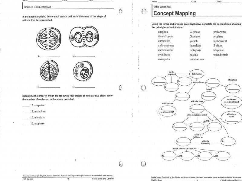 Meiosis Vs Mitosis Worksheet Mitosis Vs Meiosis Wor...