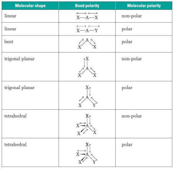 molecular geometry worksheet. Black Bedroom Furniture Sets. Home Design Ideas