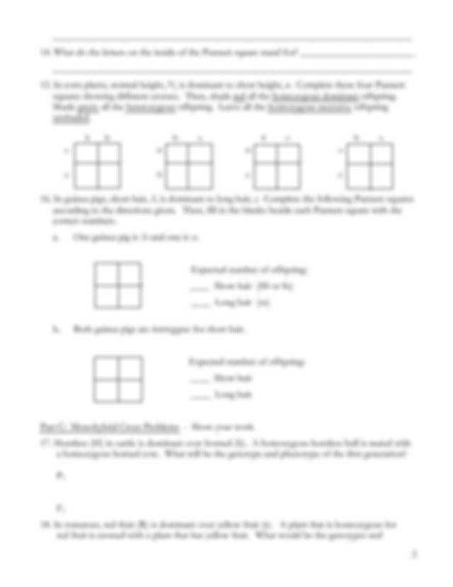 Monohybrid Cross Worksheet Answers | Homeschooldressage.com