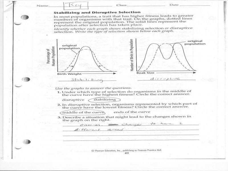 2 Source · Natural Selection & Evidence Evolution Worksheet Answers