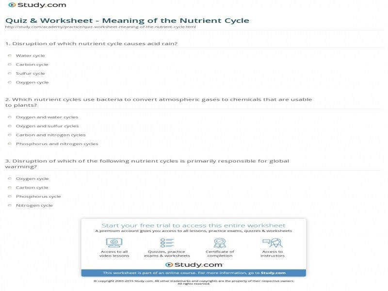Quiz & Worksheet – Meaning The Nutrient Cycle