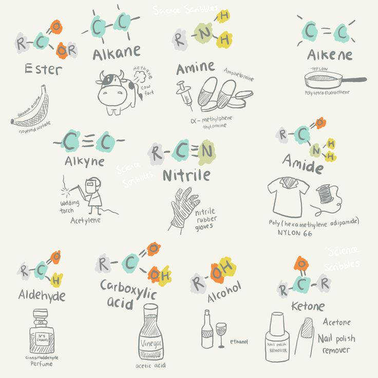 """sciencescribbles """" Chapter Fundamentals of Organic Chemistry Part Uses of organic molecules Science Scribbles A Level IB Chemistry collection Part 1"""
