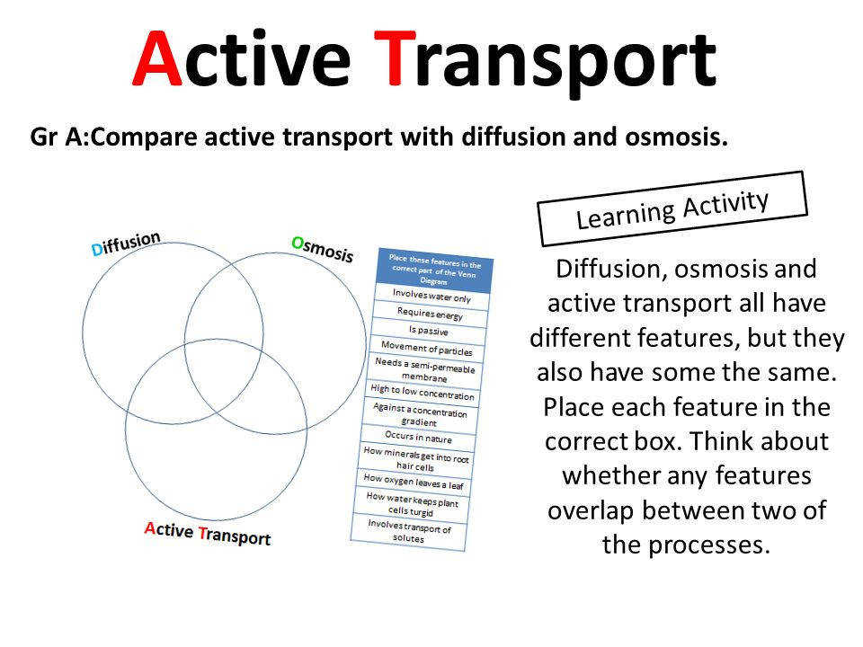 Active Transport Gr A pare active transport with diffusion and osmosis Learning Activity
