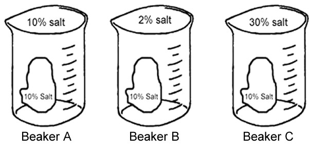 beakers solutions ABC