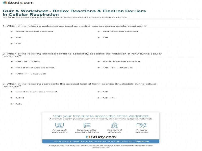 Quiz & Worksheet – Redox Reactions & Electron Carriers