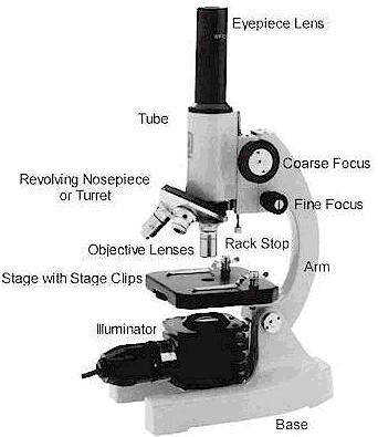 Parts of a Microscope and their Functions