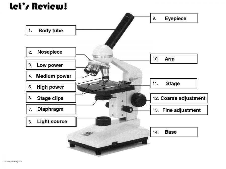 microscope diagram part