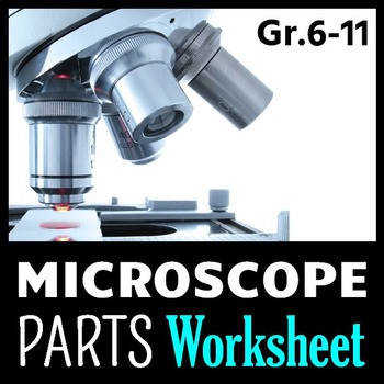 Microscope Parts PowerPoint Worksheet Editable