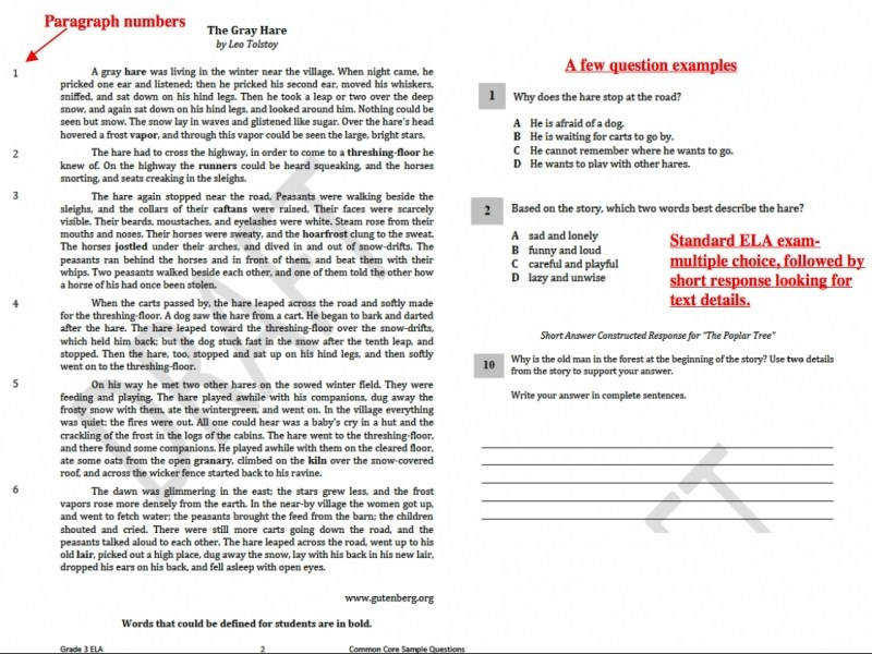 Pearson Education Math Worksheets Answers Worksheets