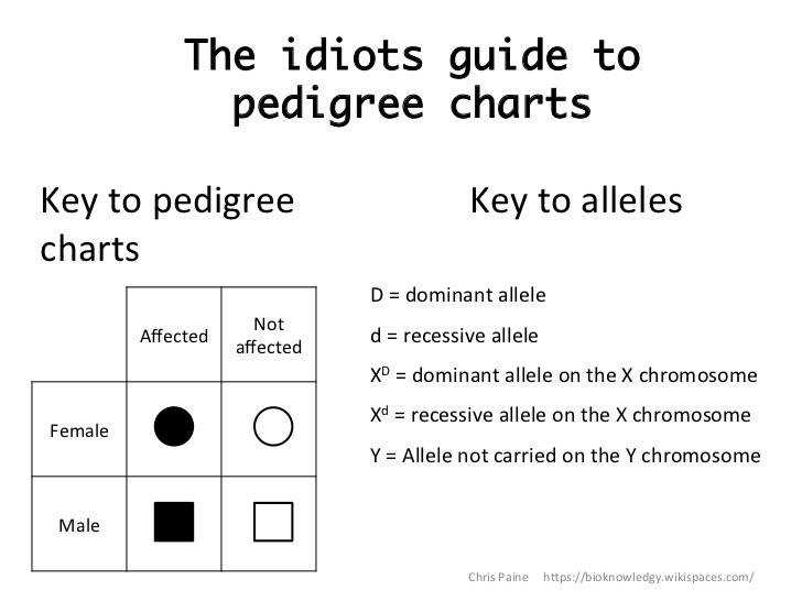 The idiots guide to pedigree chartsKey
