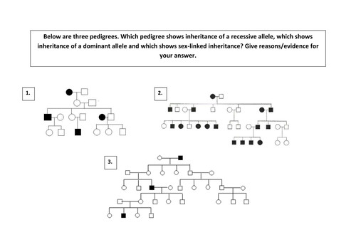 A2 pedigree diagram analysis activity genetics by scienefun