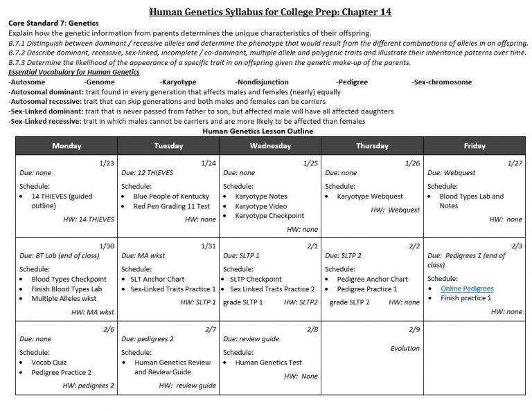 Blood Type Pedigree Worksheet Father Blood Group Multiple Alleles Problems With Answers Determining Blood Type