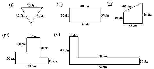 Find the perimeter of each of the following polygons and express it in metres and decimetres
