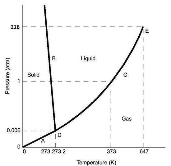 Phase diagrams for CO2 left and for H2O right