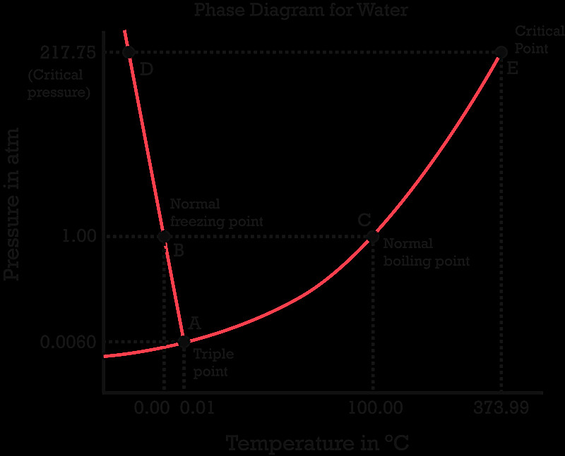 Phase diagram worksheet answers bimage tiny fine pics review questions consider the