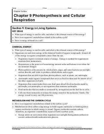 synthesis starts with worksheet answers stinksnthings energy in a cell worksheet chapter 9 the best and