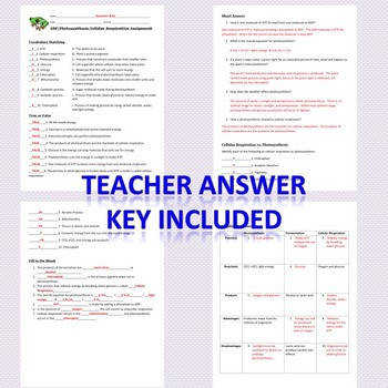 ATP synthesis & Cellular Respiration Study Guide or Classwork