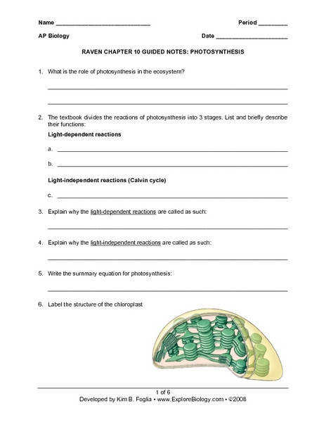 Photosynthesis Worksheet Answers Homeschooldressage Com
